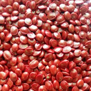 Суперконцентрат красителя красный (MASTERBATCH POLYCOLOR  RED 04004)