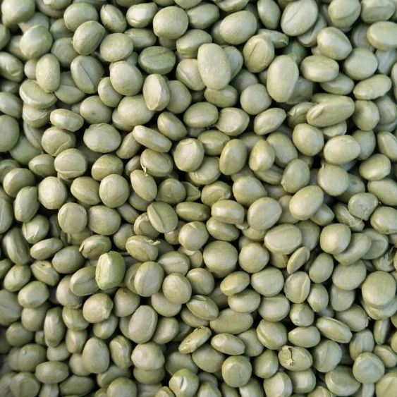 Мастербатч зеленый (MASTERBATCH POLYCOLOR  GREEN 04083)